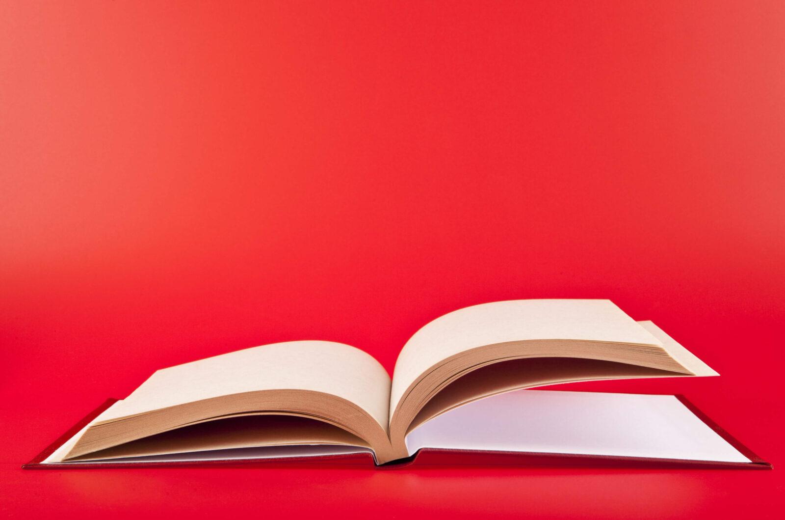 Linda Bjork books